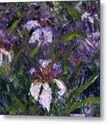 Iris Garden Metal Print