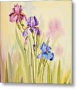 Iris Garden Ll Metal Print