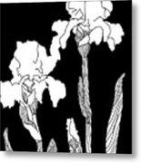 Iris Notan Metal Print