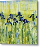 Iris On Parade Metal Print