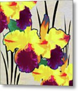 Iris Shadow Metal Print