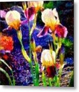 Iris Song Metal Print