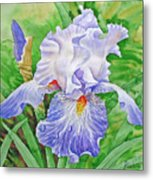 Iris.drops Of Dew .2007 Metal Print