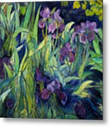 Irises At High Altitude Auribeau France 2004   Metal Print