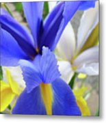 Irises Flowers Artwork Blue Purple Iris Flowers 1 Botanical Floral Garden Baslee Troutman Metal Print