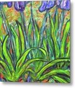 Irises In A Sunny Garden Metal Print
