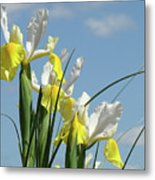 Irises In Blue Sky Art Print Spring Iris Flowers Baslee Troutman Metal Print