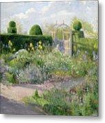 Irises In The Herb Garden Metal Print