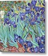 Irises Metal Print by Pg Reproductions