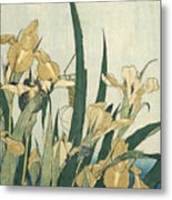 Irises With A Grasshopper Metal Print
