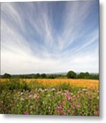 Irish Country Side Meadows Metal Print
