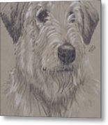 Irish Wolfhound Metal Print