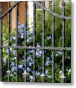 Iron Gate And Blue Flowers Metal Print