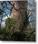Ironbridge Cooling Tower Metal Print