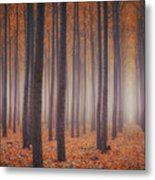 Is There Anybody In There? Metal Print
