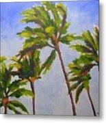 Island Palms Metal Print