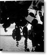 Island - View -  Black And White Metal Print