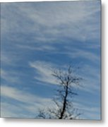 Isolated In The Blue Metal Print