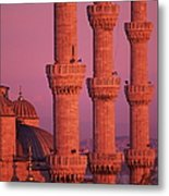 Istanbul, Turkey, Blue Mosque Metal Print
