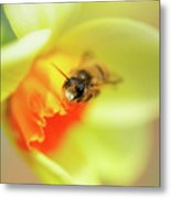 It Just Wouldn't Bee Spring Without ... Metal Print