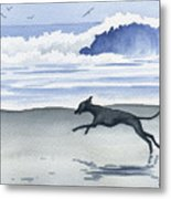 Italian Greyhound At The Beach Metal Print