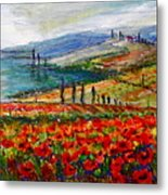 Italy Tuscan Poppies Metal Print