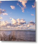 It's A Beautiful Day Metal Print