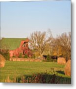 It's A Sunny Day Metal Print