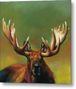 Its All About The Rack Metal Print