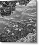 It's All Clear To Me Now Metal Print
