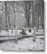 Its Cold Outside Metal Print