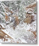 It's Mid May. We're Fast Approaching The End Of Our Snow Season.  Metal Print