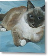 Itty Bitty Kitty Metal Print