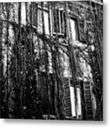 Ivy Building Metal Print