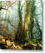 Ivy In The Woods Metal Print