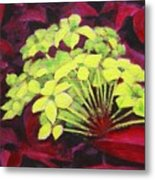 Ixora - Jungle Flame Metal Print