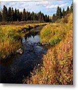 Jackfish Creek In Autumn Metal Print