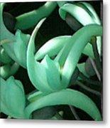 Jade Vine Metal Print