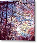 January Beauty 1 Metal Print