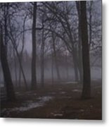 January Fog 2 Metal Print