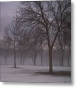 January Fog 4 Metal Print