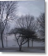 January Fog 6 Metal Print