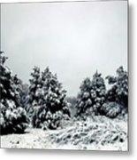January Snow Iv Metal Print