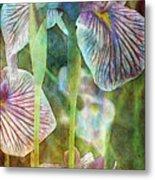 Japanese Iris Tall 2694 Idp_4 Metal Print