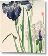 Japanese Irises Metal Print