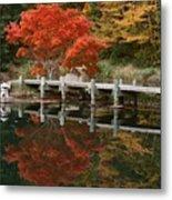 Japanese Reflection Metal Print