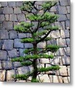 Japanese Tree Metal Print