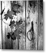 Japton Door Metal Print