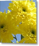Yellow Trio Metal Print