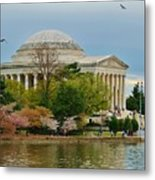 Jefferson Memorial, Springtime In Dc Is When Things Bloom, Like The Japanese Cherry Trees Metal Print